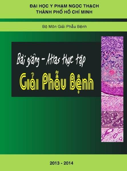 thuc tap gpb pnt