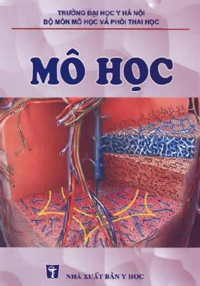mo hoc