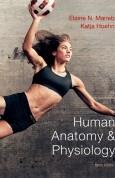 Human Anatomy & Physiology 9e