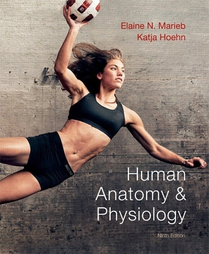 Human Anatomy & Physiology 9e