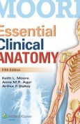 Moore Essential Clinical Anatomy 5th edition