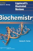 Biochemistry (Lippincott's Illusrated Reviews Series), 6th Edition