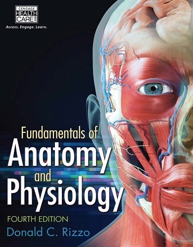 Fundamentals of Anatomy and Physiology (11th Edition), hardcover by Martini.
