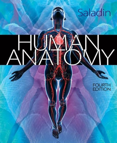 Saladin's Human Anatomy 4th Edition