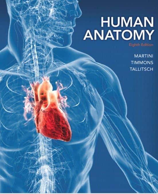 human anatomy 8e