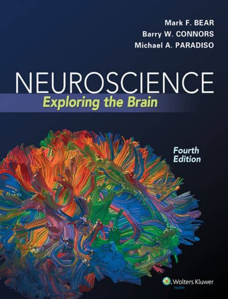 neuroscience exploring the brain 4th edition