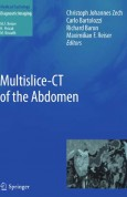 Multislice-CT of the Abdomen
